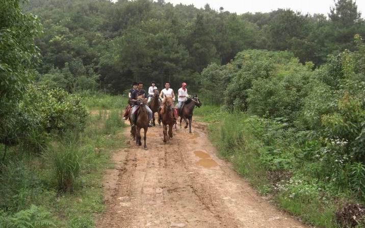 记得第一次骑马就是在野外—北京的康西草原