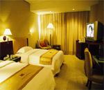 万博官网手机版下载龙城国际饭店 客房