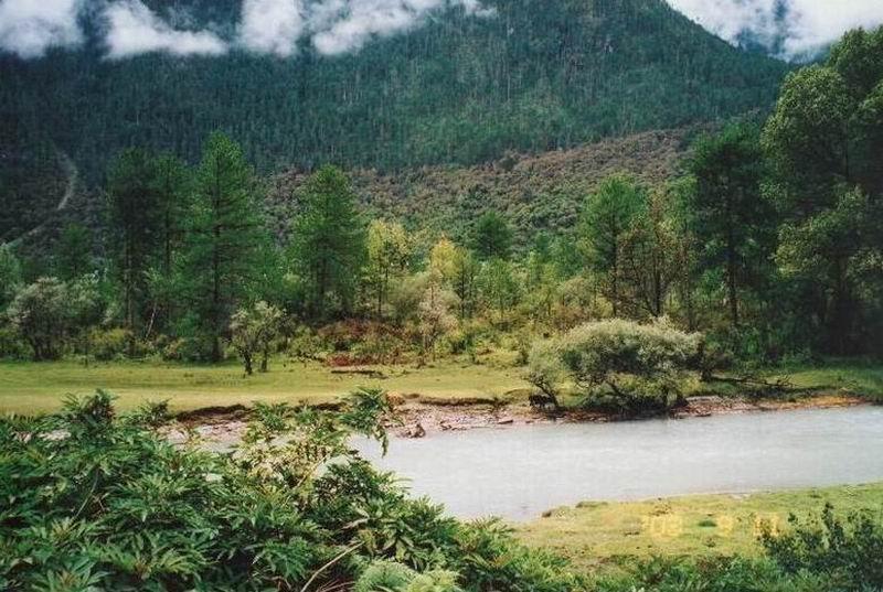 西藏林芝圖片:西藏波密風光