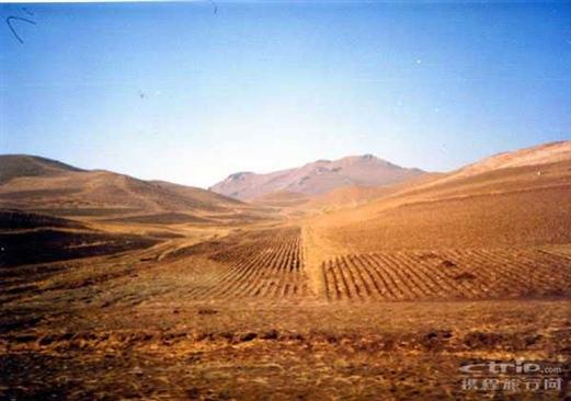 内蒙古高原1
