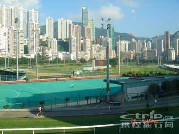 香港的赛马场景色