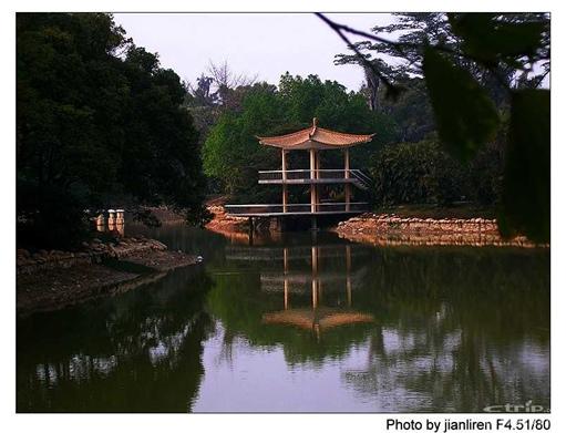 华南植物园 地址:东莞广州市兴科路723号 电话:020-87713796 进入