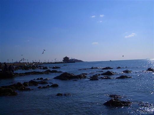 青岛冬天的海--第六海水浴场