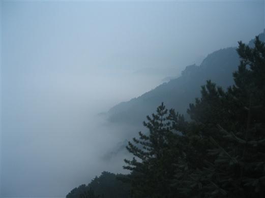 那山 那雾 - 一掬茗香 - 一掬茗香的博客
