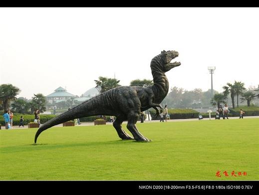 江苏 常州 中华恐龙园的全部照片