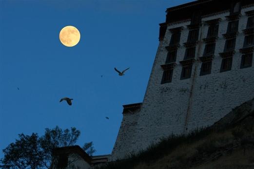 布达拉宫(月亮版)