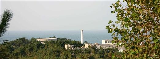 威海成山头动物园海滨
