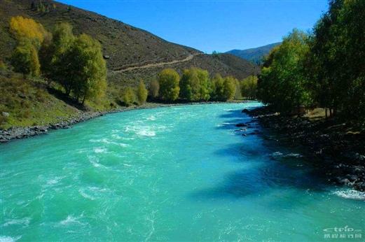 新疆 禾木 喀纳斯旅游的全部照片图片