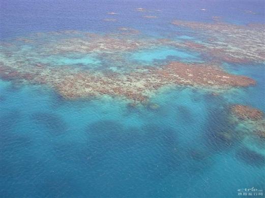 澳大利亚 凯恩斯 大堡礁的全部照片