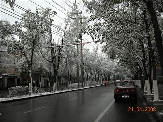 青海 西宁旅游的全部照片图片