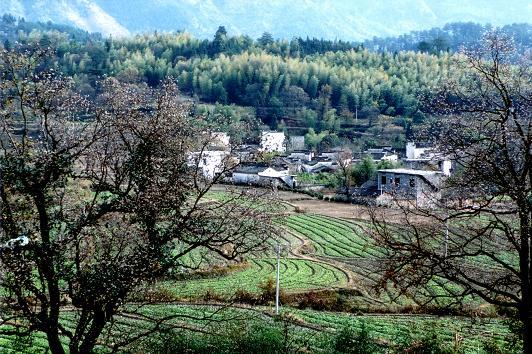 Lu Village - Chinese tourism scenic spots