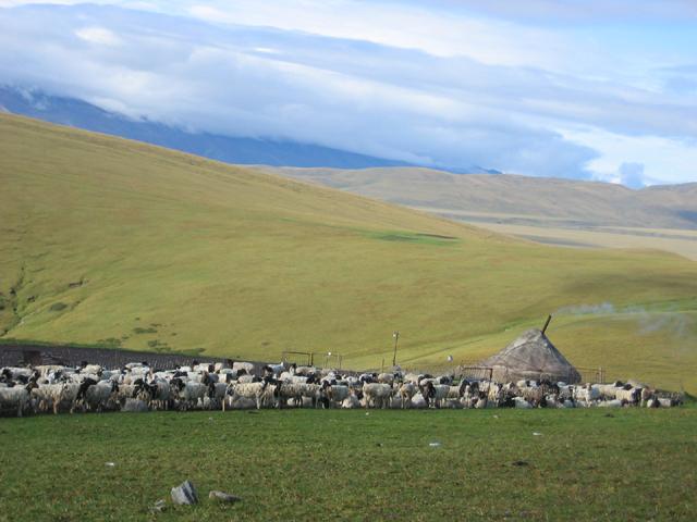 新疆位于中国西北部的内陆,乌鲁木齐是世界上距离海洋最远的城市。从深圳坐飞机到乌鲁木齐需5小时。在飞机接近乌鲁木齐时,视线里出现了一群俊秀挺拔的雪山,孤傲地挺立于天际。 啊!雪山! 我兴奋地惊呼。我想那最高的山峰应该就是天山的最高峰博格达峰了,一问旁人,果真是的。
