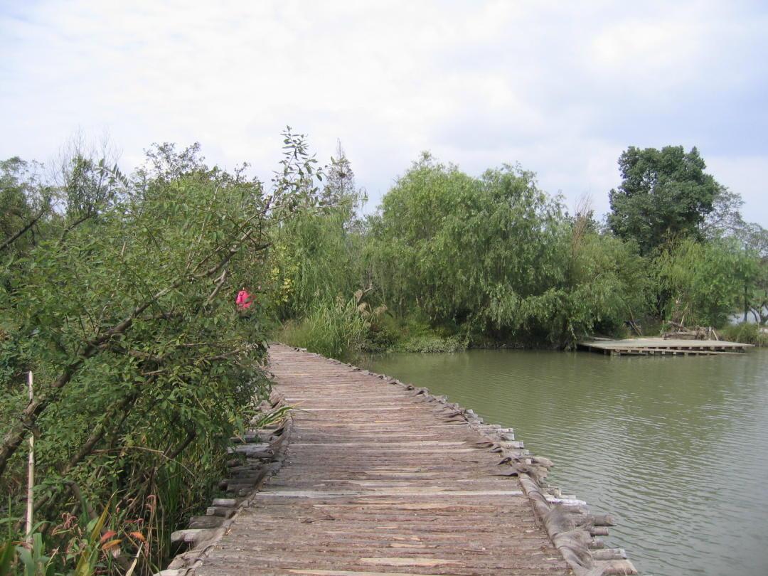 西溪湿地公园,集城市、农耕和文化于一体的湿地公园 - 莫家楼人 - 莫家楼人