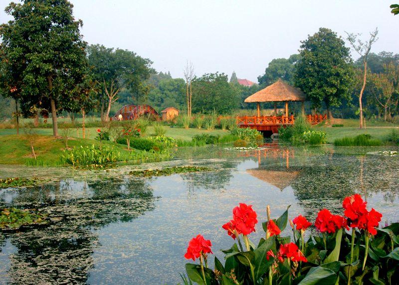 杨公堤——别样的西湖美景_杭州旅游攻略