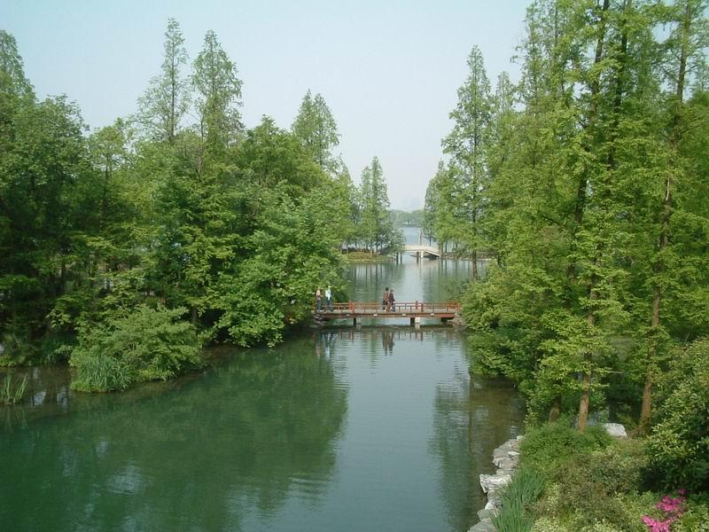 我的西湖杨公堤之行(1)_杭州旅游攻略