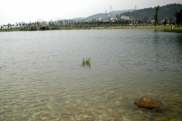 """无锡太湖新景点--""""杨湾"""",顺路去灵山大佛_无锡旅游攻略_驴妈妈旅游攻"""