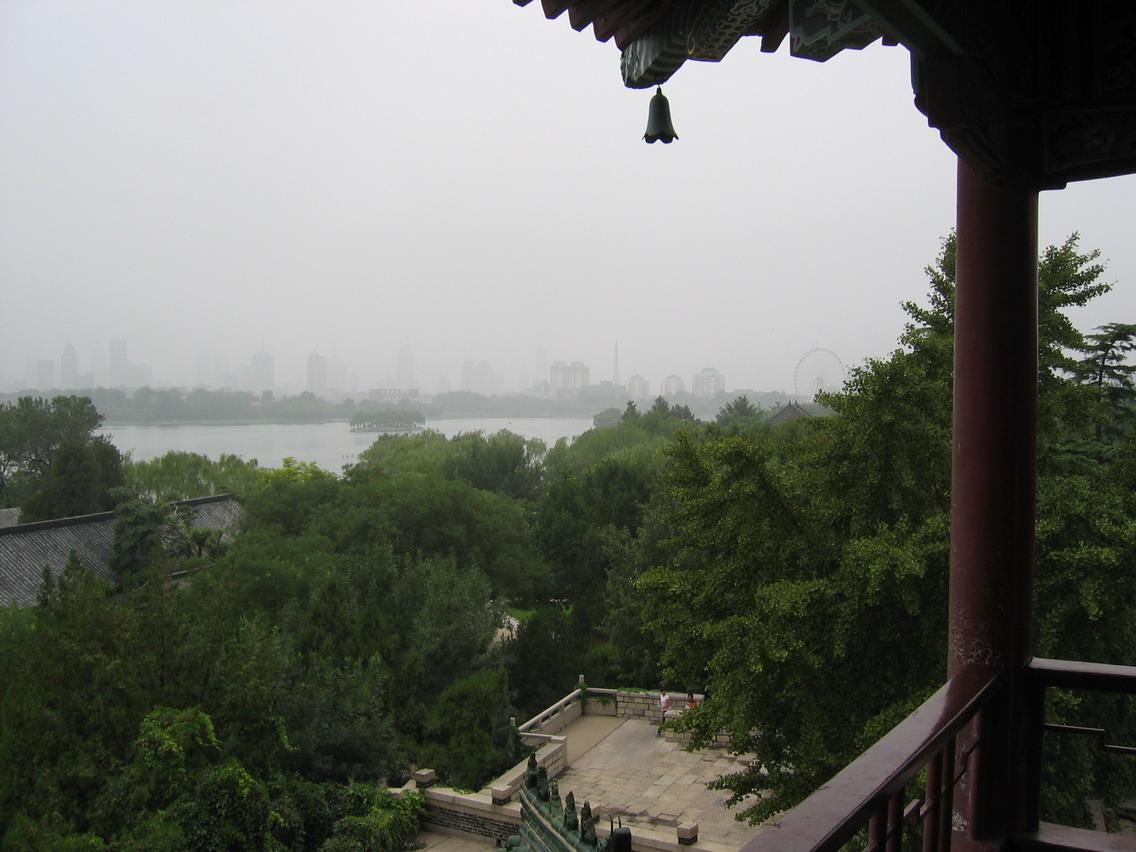 济南公园柳树风景壁纸