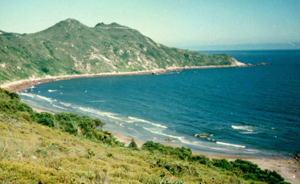 风月荷包岛