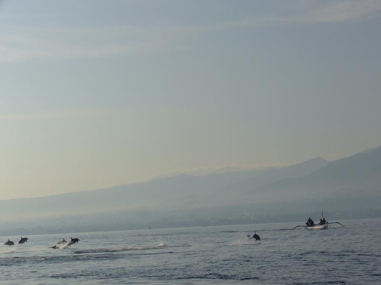 巴厘岛旅游攻略