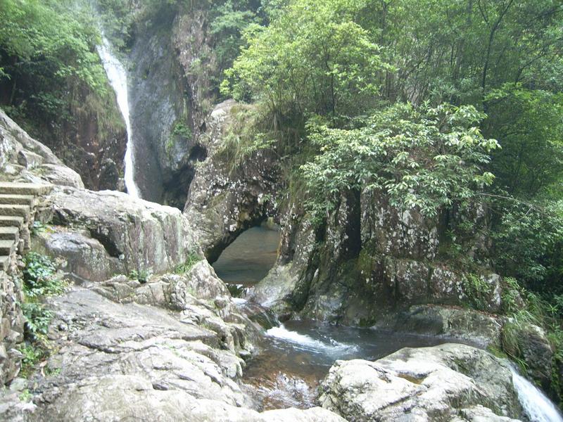 人物仙境森林风景