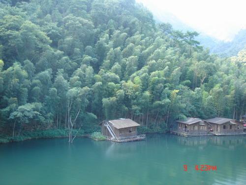 竹林水边风景