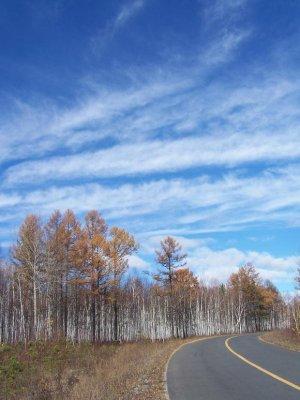 不过,景色还是很美,枯草秋树,蓝天白云,河畔的马匹,吃草的牛群,一派北