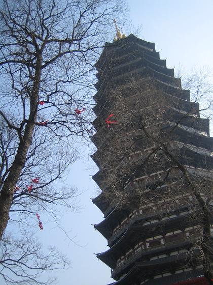 08年新春 常州无锡游 - 天宁寺 红梅花园 东坡园 东林书院 梅园