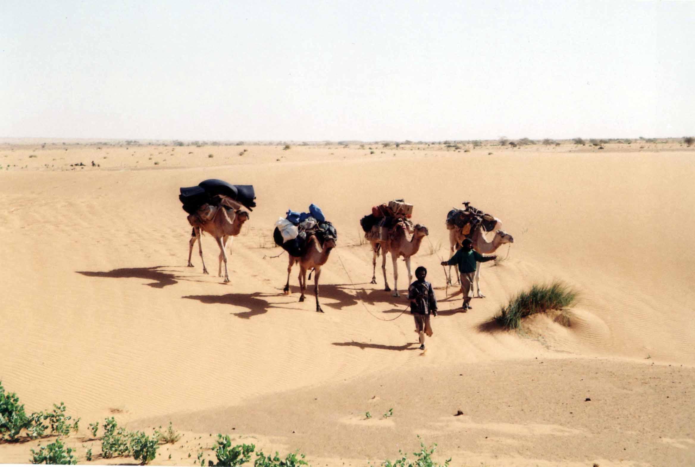 二。撒哈拉古城之魂 首姆站与其它车站一样,沙漠中的一点而已。同时下车的一个当地人领着我们黑暗中深一脚浅一脚到了几百米外最多十几户人家的首姆镇,这里是过往车辆中转站。直到上午十点,我们才截到了一辆往南去阿塔的丰田敞棚货车,车上装满行李杂物,已有五六个当地人坐在上面。我们挤坐在一只旧轮胎上,三个多小时颠簸,午后不久到了阿塔。 我很高兴选择了与奥利威尔同行。这个法国人性格直爽,兴趣广泛,很带点书生气。更重要的是,他没有语言障碍,能与当地人交流。如果是我自己单独走,事情也能运转,但困难会比我原来想像的大。没有语言