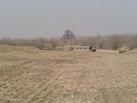 吉林省四平市:梨树神榆