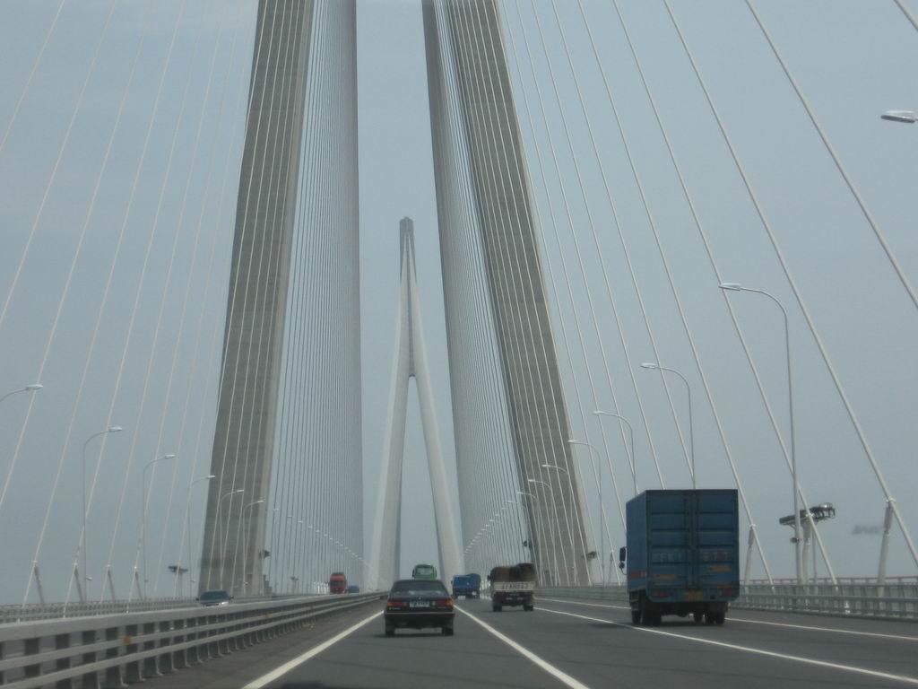 (苏通大桥的桥塔和拉索)