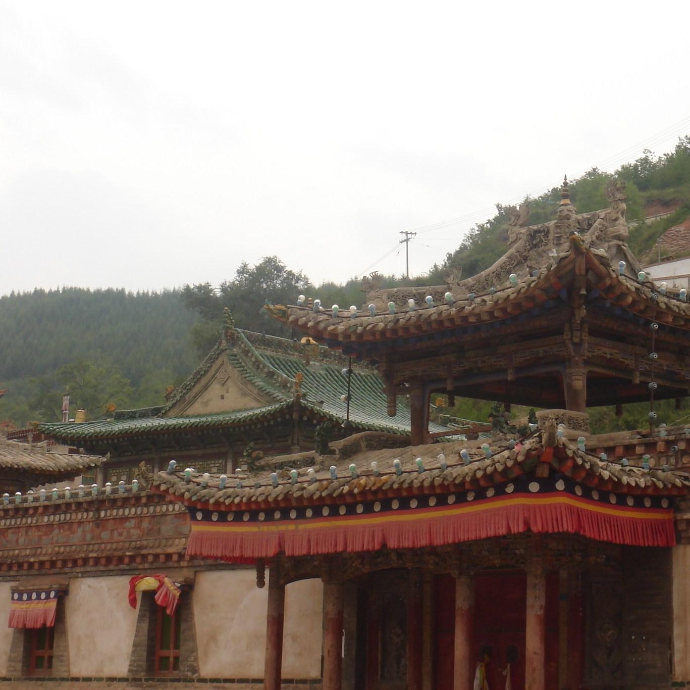 游览过布达拉宫和西藏的纳木错、羊湖之后,对塔尔寺和青海湖本来没有了太多的奢望。但是,去过才知不虚此行!塔尔寺虽然不如布达拉宫壮观、雄伟,但其细节处的装饰精致美丽,极具艺术独创性。每一间院落的门楼,每一座庙宇的楼顶,都凝聚着能工巧匠的艺术造诣。如果有更多的时间,我一定会细细品味。这次时间不多,匆匆拍了几张照片就离开了! 看过很多游记知道应该7月去青海湖看油菜花,我的假期时间已经是8月20日了,到了青海湖竟然还能看到一片盛开的油菜花!听司机说这一片的品种不同,花期比较晚,我也因此大饱眼福,真是喜出望外!