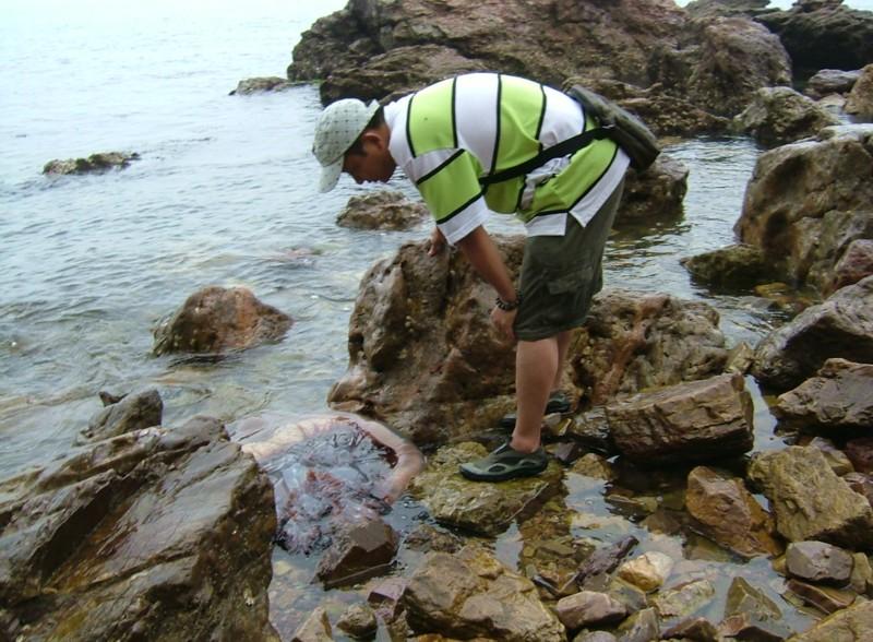 山东环海6天5晚青岛威海蓬莱长岛乳山银滩自驾游攻略