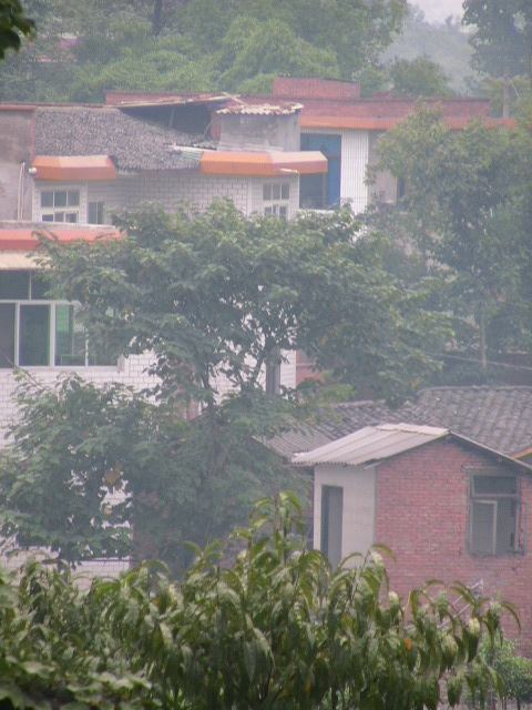 农村尖顶房屋设计图