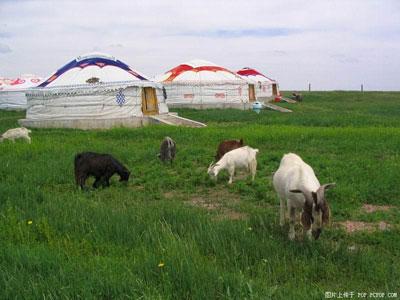 内蒙古大清沟两日游