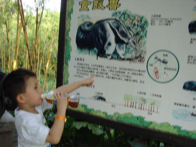 广州香江野生动物园_广州旅游攻略