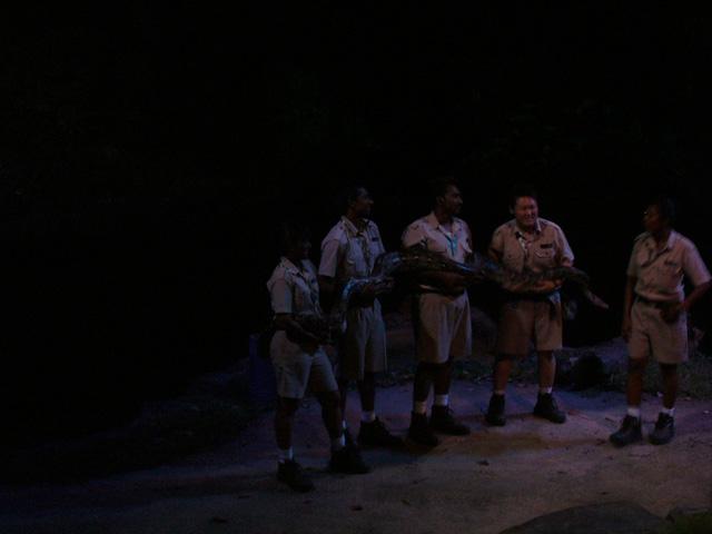 新加坡旅游攻略 新加坡夜间动物园  年初一晚上人太多了,连看动物表演