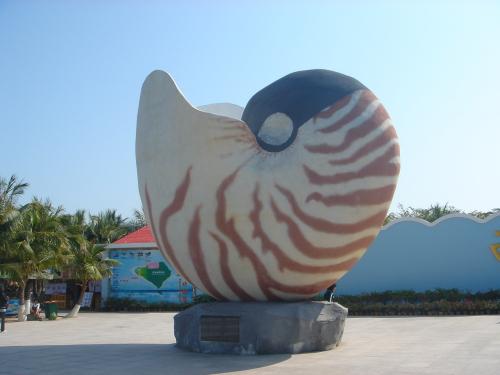 (西岛标志性景观—鹦鹉螺!)