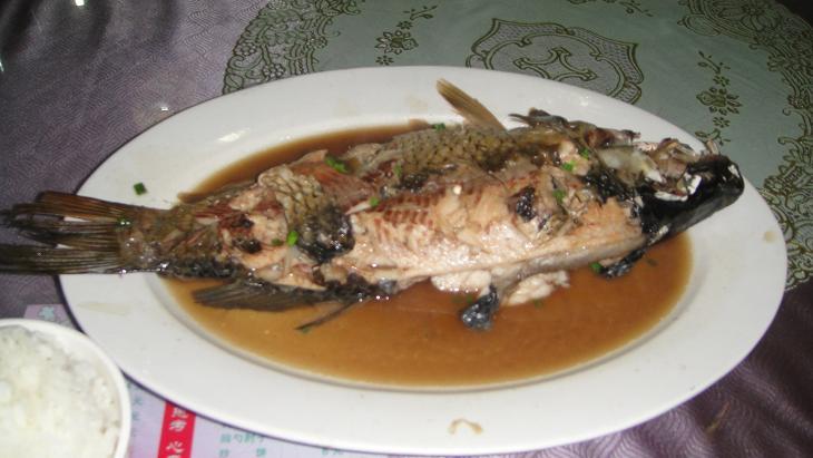 鱼粮食粘贴画鱼