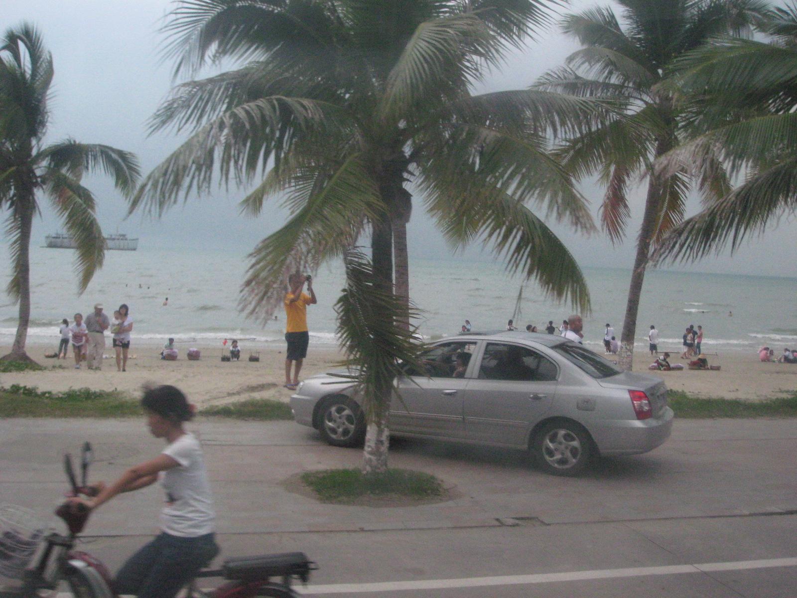 蓝天白云还有椰子树,我第一眼就爱上了海南.