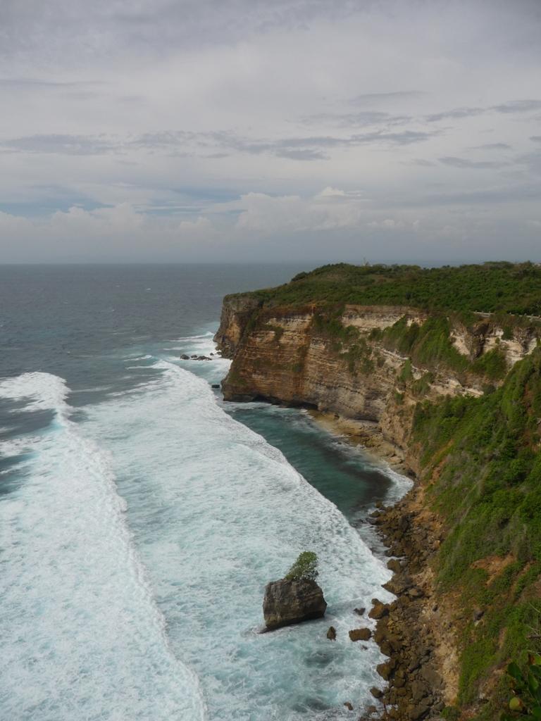 岛上有很多小动物,包括大小海龟,蜥蜴,果蝠,犀鸟,鹦鹉,甚至蟒蛇等等都