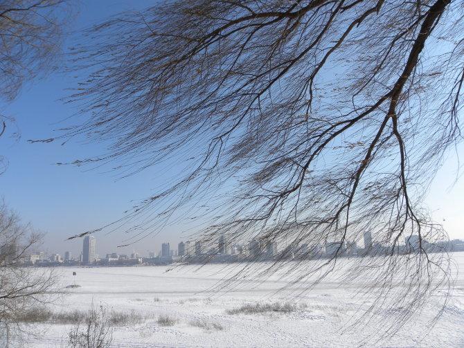 冰雪哈尔滨