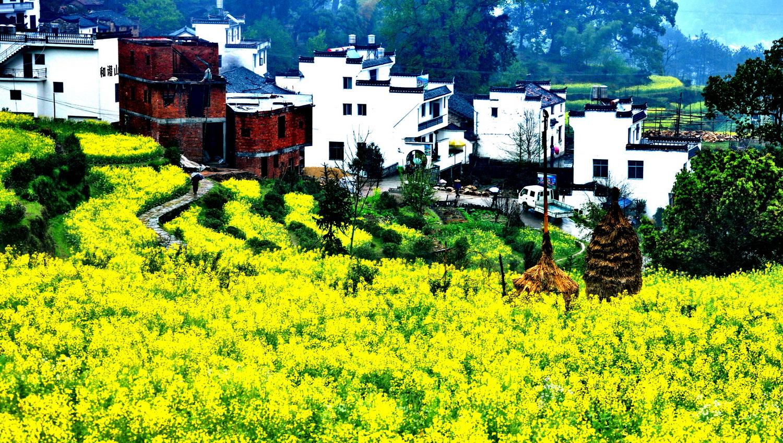 Image result for 江西婺源