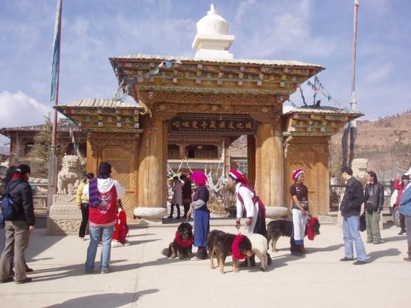 主建筑是传统的木雕楼式结构